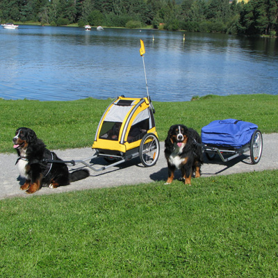 Nordiccab_dog_child_cargo_st