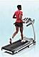 Shw_cat_treadmills